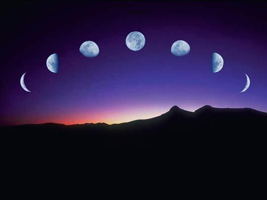 когда сеять по лунному календарю