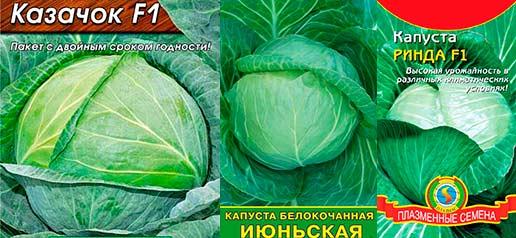 Сорта ранней капусты
